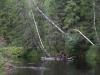 Rauanjoki