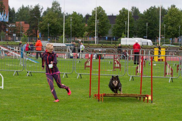 Kero Agiråkissa. Kuva: Ulla Tuomi