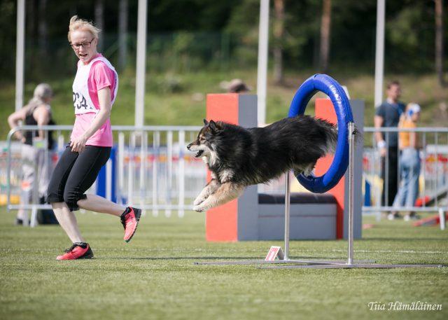 Renkaasta läpi. Valokuvaaja Tiia Hämäläinen, tiiahoo.com